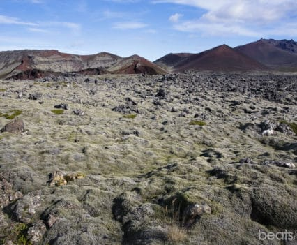 carretera 558 lava Berserkjahraun península Snaefellsnes viajar a Islandia por tu cuenta blog viajes
