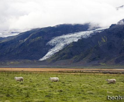 alojamiento sur Islandia barato Glaciar Eyjafjallajökull Islandia Fljotsdalur hostel