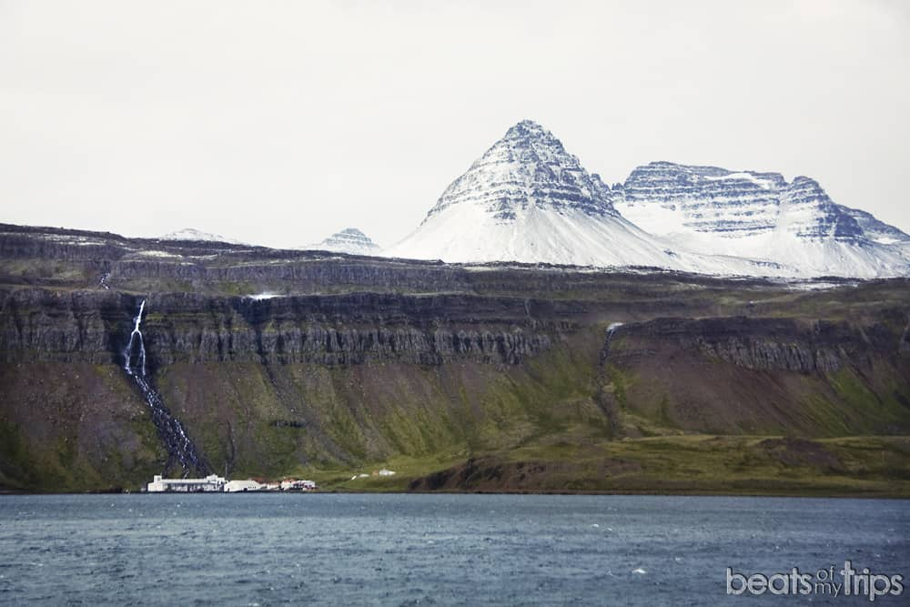 Reykjarfjordur fiordos oeste