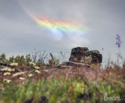 Vetones Reserva Natural Garganta Infiernos Extremadura Jerte Plasencia