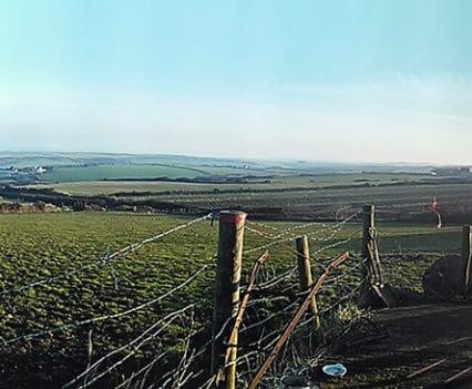 Wwoofing Gales