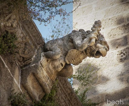 Gárgola Catedral de Plasencia Extremadura