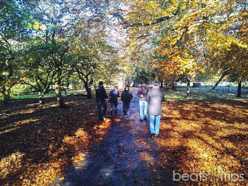 Cardiff que hacer parque Bute park que ver Cardiff visitar Gales capital