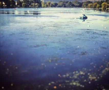 Cardiff Parque Roath lago actividades que hacer cardiff viajar a gales blog viajes