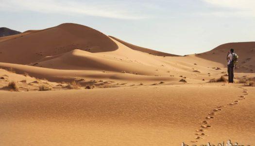 Un día inolvidable en el desierto del Sáhara