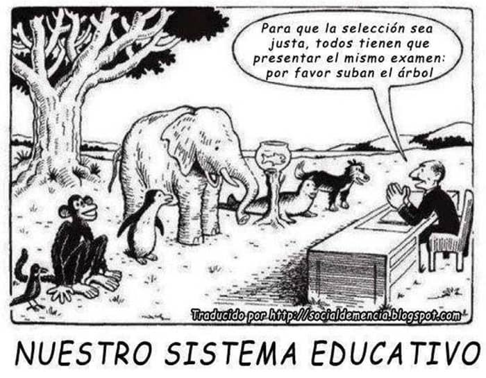 que escuela alternativa waldorf montessori diferencia cual elegir escuela libre educación