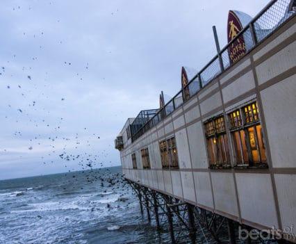 Estorninos Royal Pier Aberystwyth muelle viajar Gales playa Turismo Wales