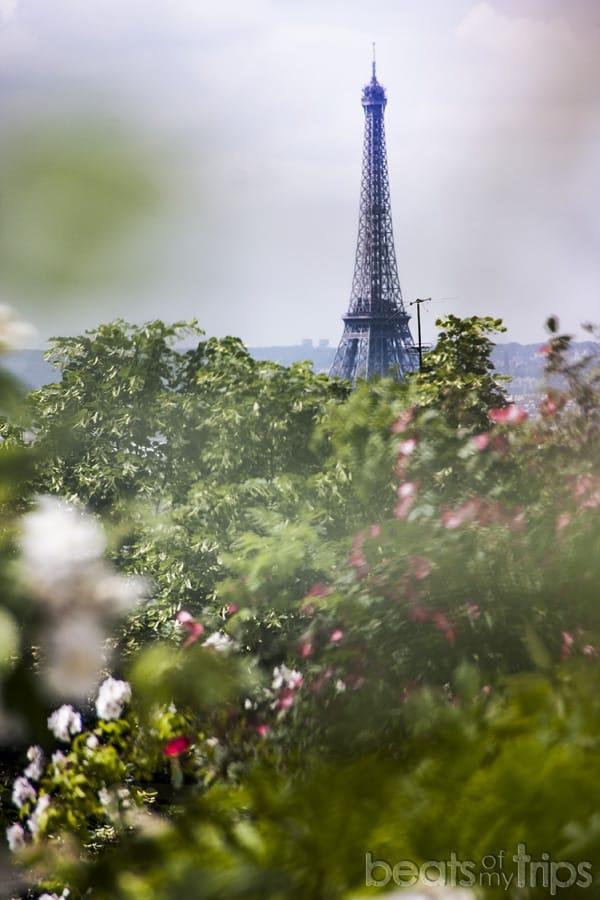 Parque Belleville vistas Torre Eiffel picnic turismo Paris vacaciones
