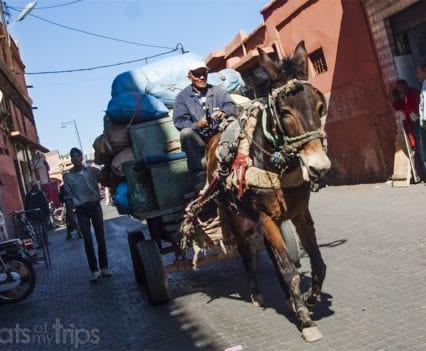 Que ver Marrakech un dia Marrakesh escapada fin de semana