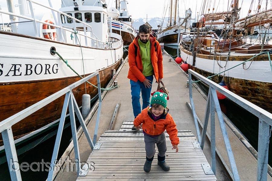 Excursión tour whale watching Islandia Iceland Husavik qué compañía