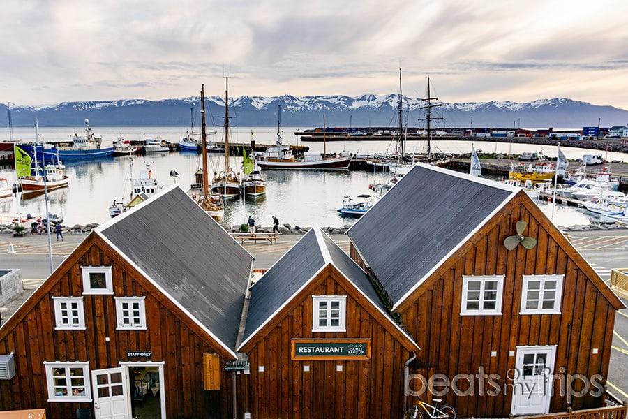 montañas nevadas Husavik Islandia puerto bahia Skjálfandi whale watching
