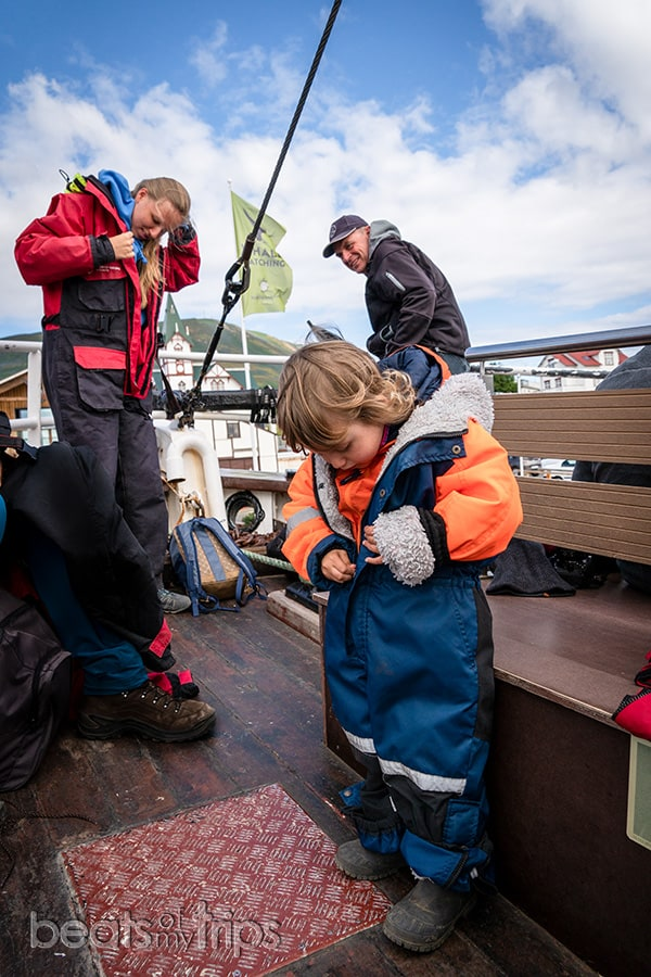 compañías tour avistamiento de ballenas cual elegir Islandia