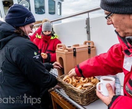 cinnamon bun whale watching Iceland qué excursión hacer Islandia
