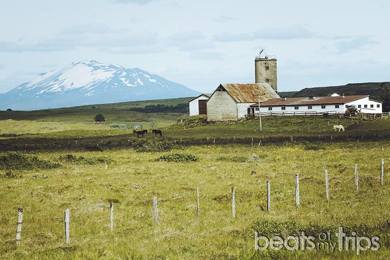 Volcan Hekla granja Islandia ring road